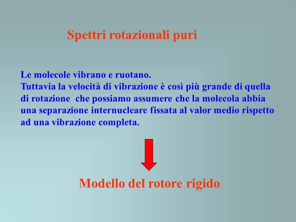 Modello del rotore rigido