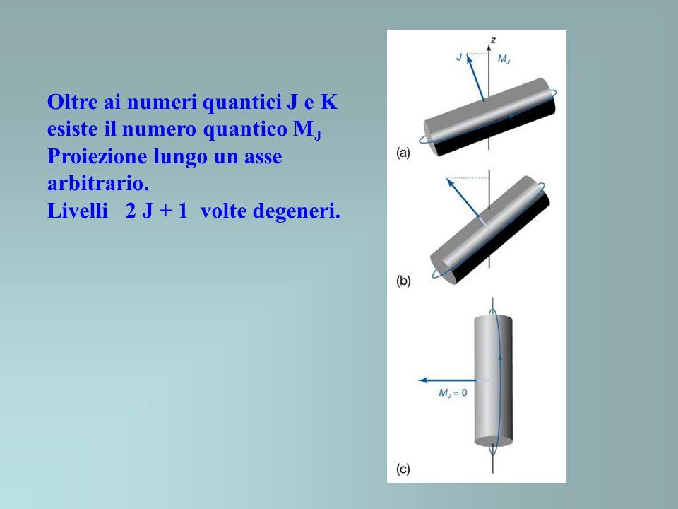 Oltre ai numeri quantici J e K esiste il numero quantico MJ