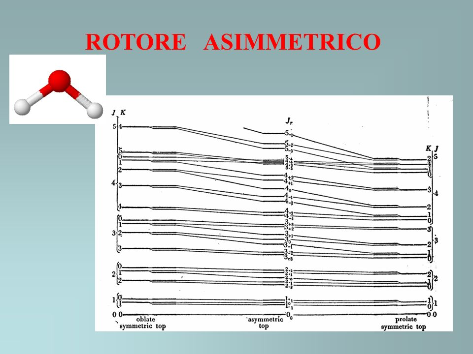 ROTORE ASIMMETRICO