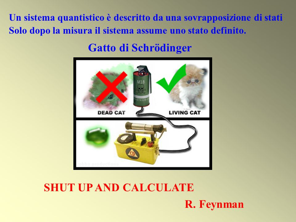 Gatto di Schrödinger SHUT UP AND CALCULATE R. Feynman