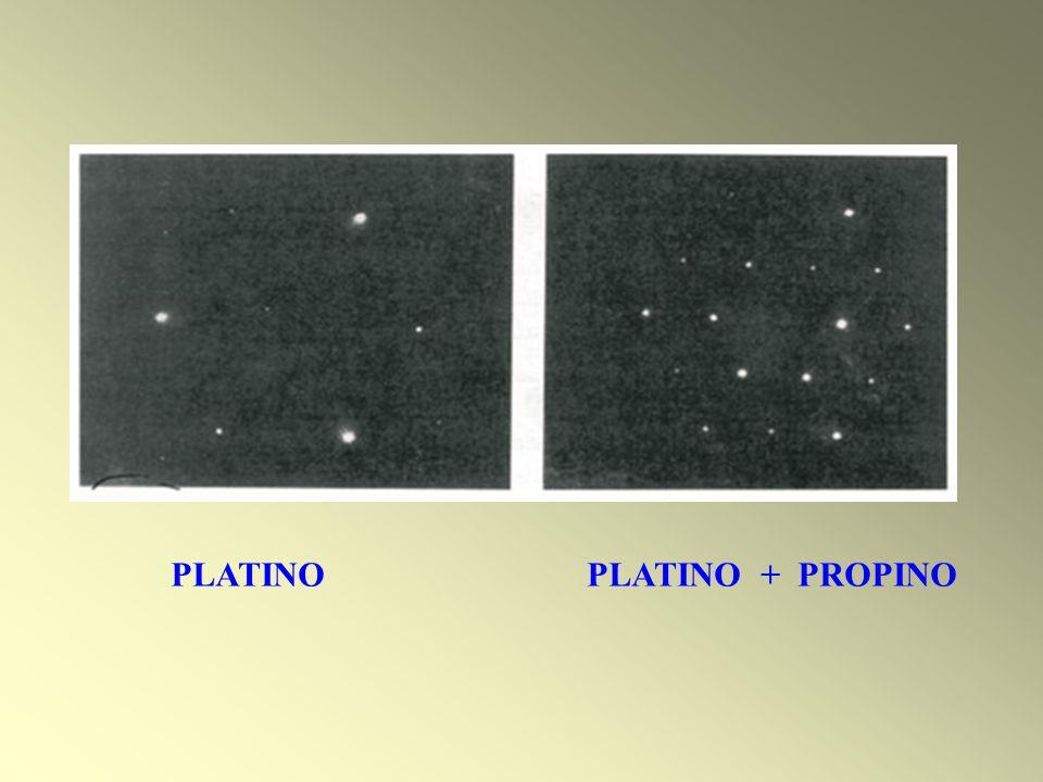 PLATINO PLATINO + PROPINO