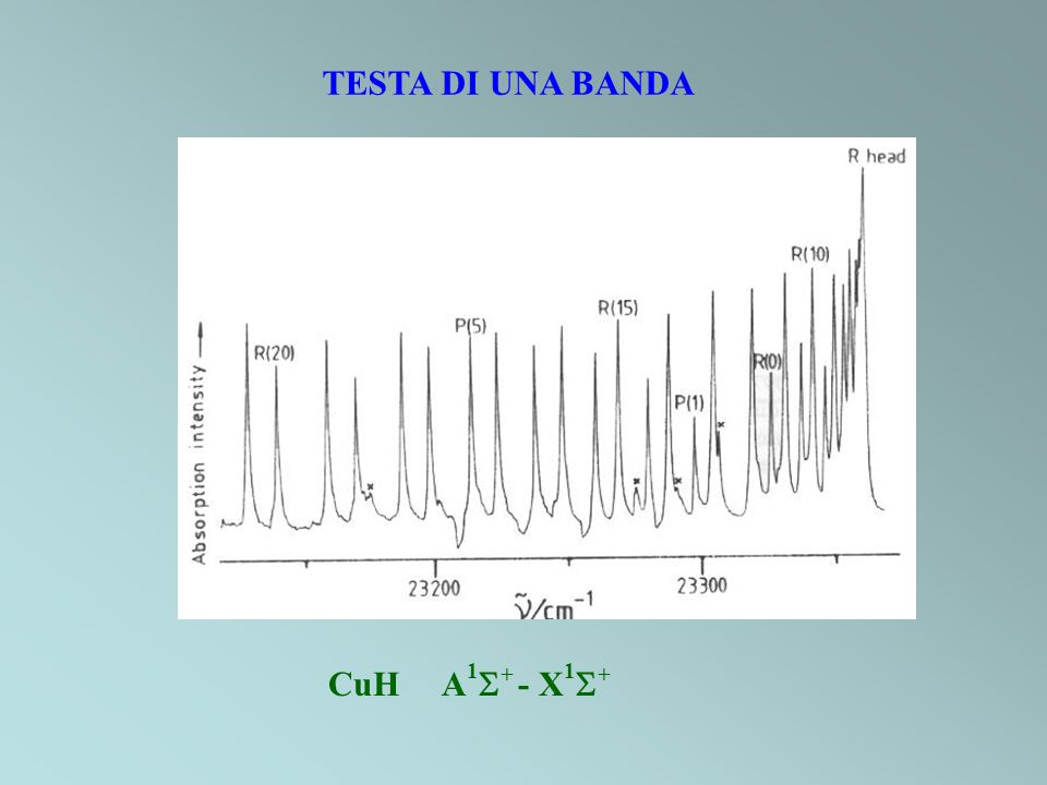 TESTA DI UNA BANDA CuH A1+ - X1+