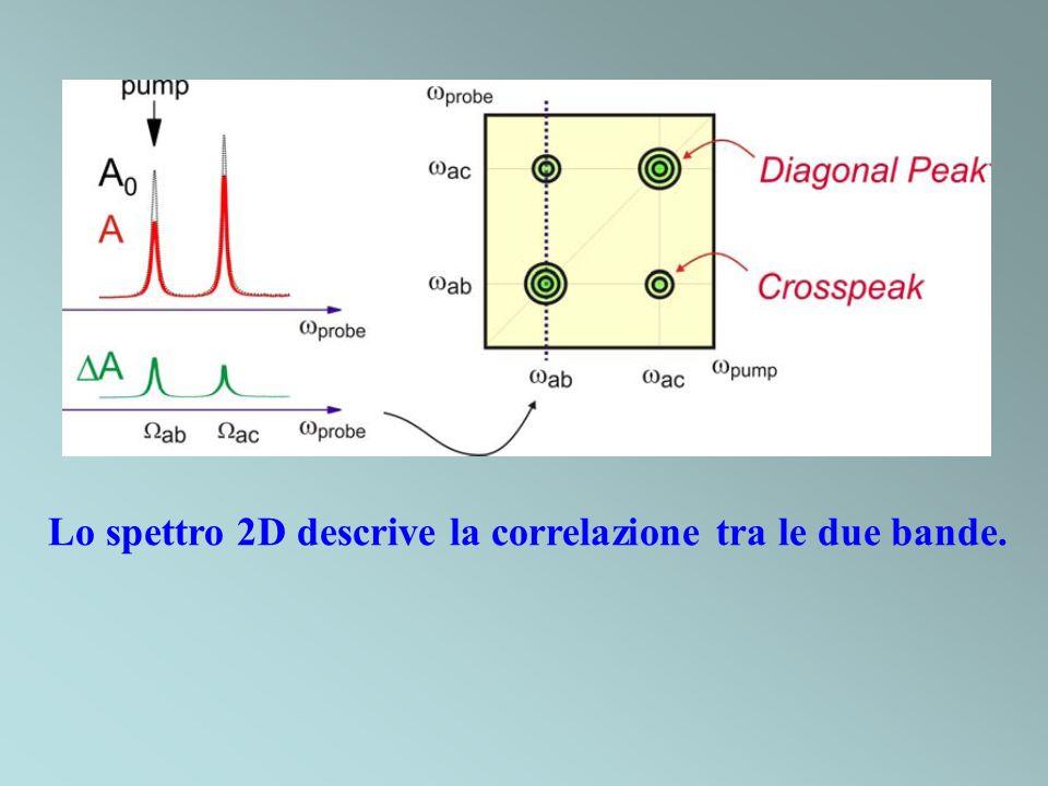 Lo spettro 2D descrive la correlazione tra le due bande.