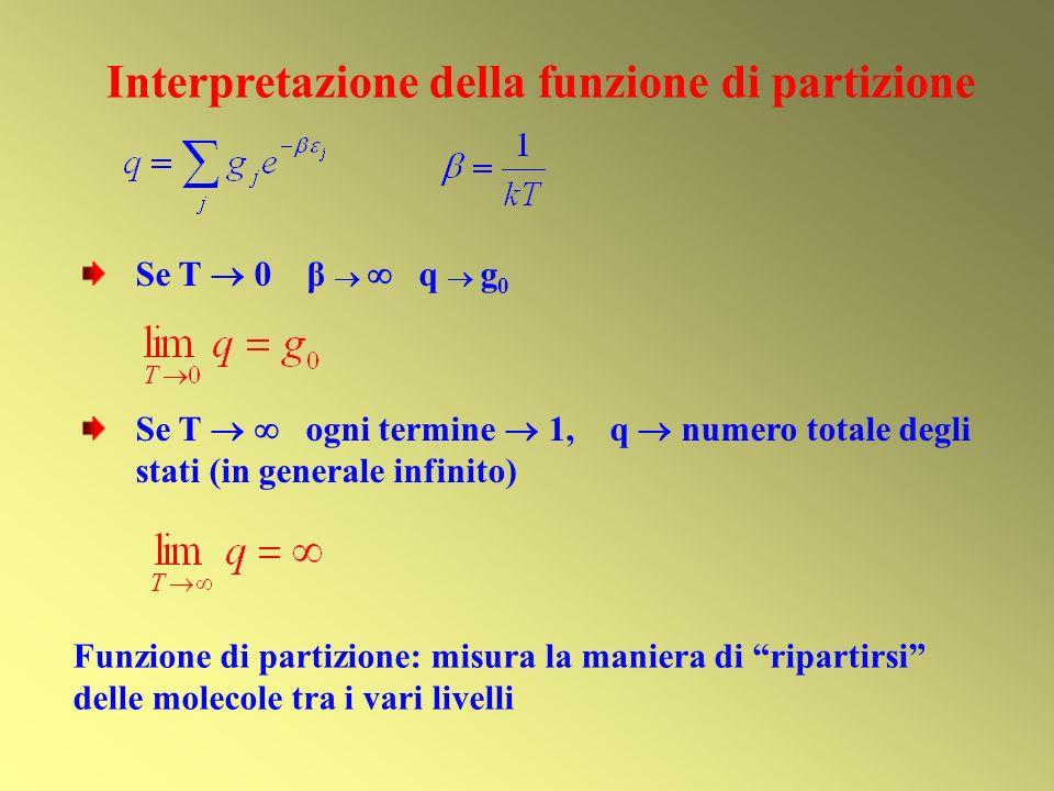 Interpretazione della funzione di partizione