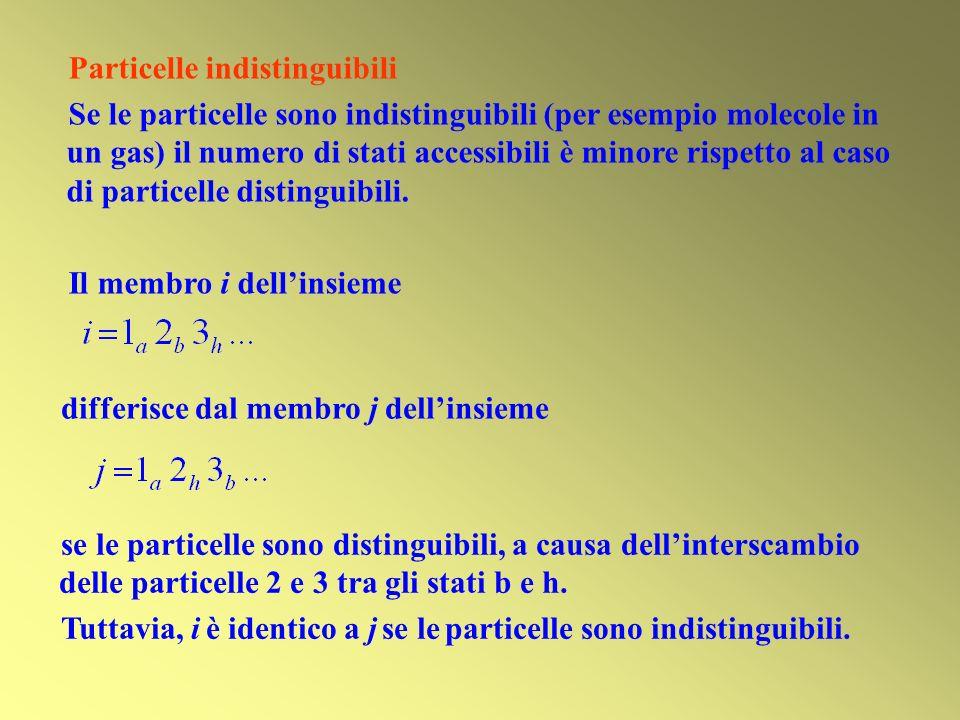 Particelle indistinguibili