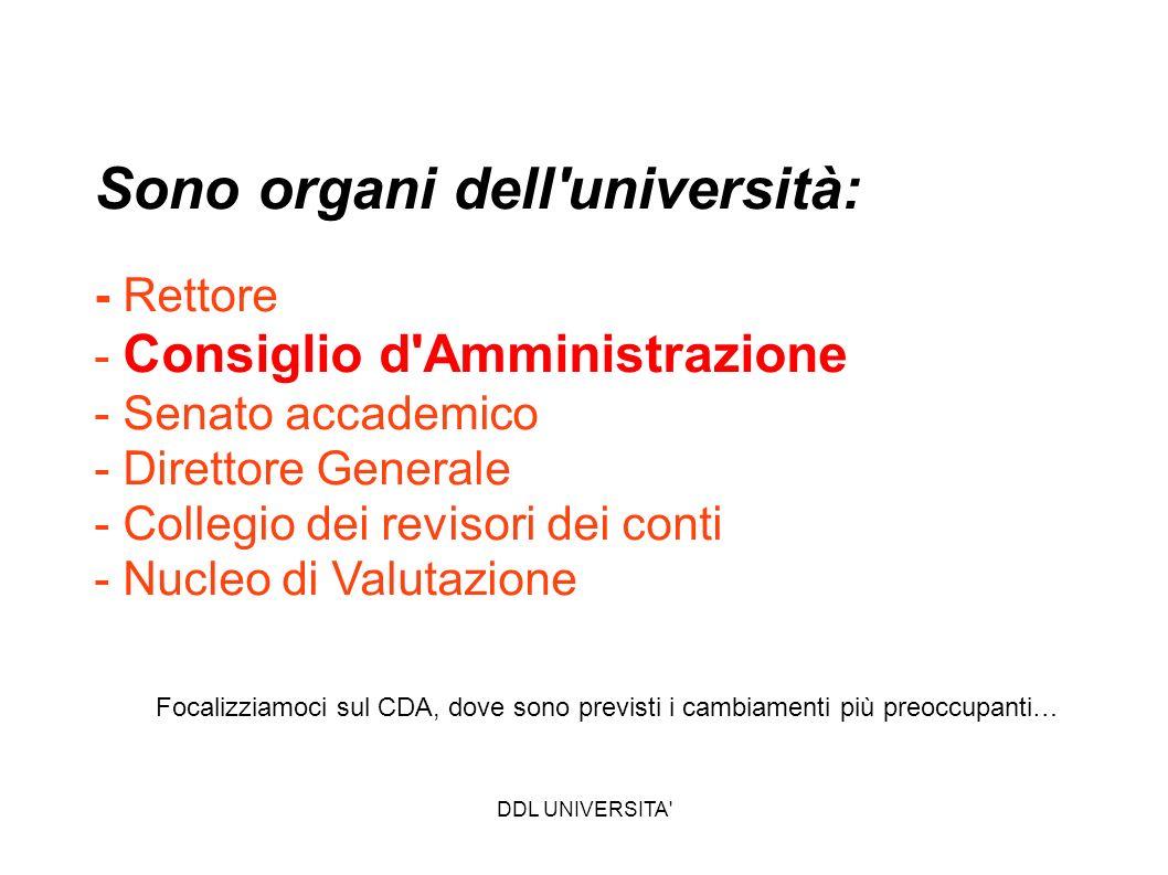 Sono organi dell università: