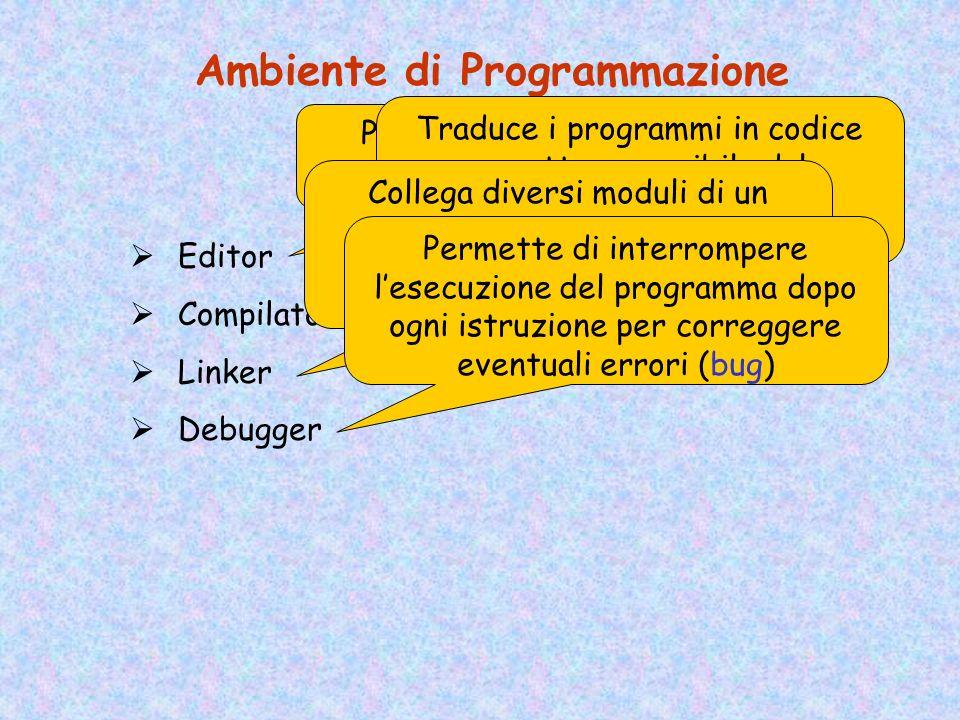 Ambiente di Programmazione