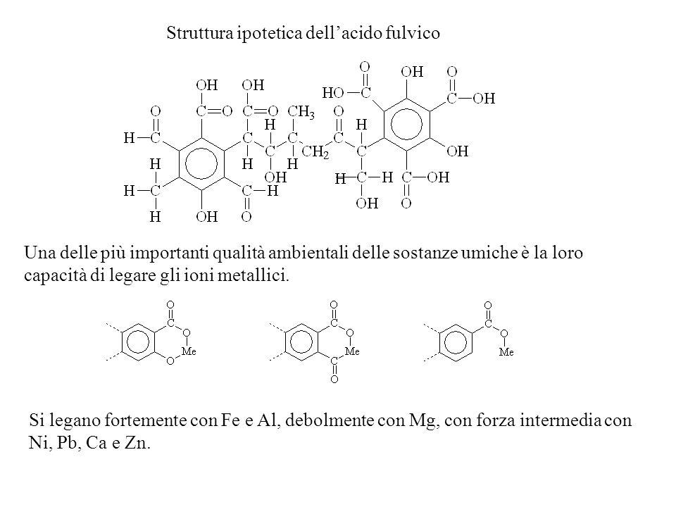 Struttura ipotetica dell'acido fulvico
