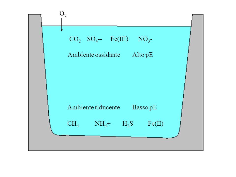 O2 O2. CO2. SO4-- Fe(III) NO3- Ambiente ossidante Alto pE. Ambiente riducente Basso pE.