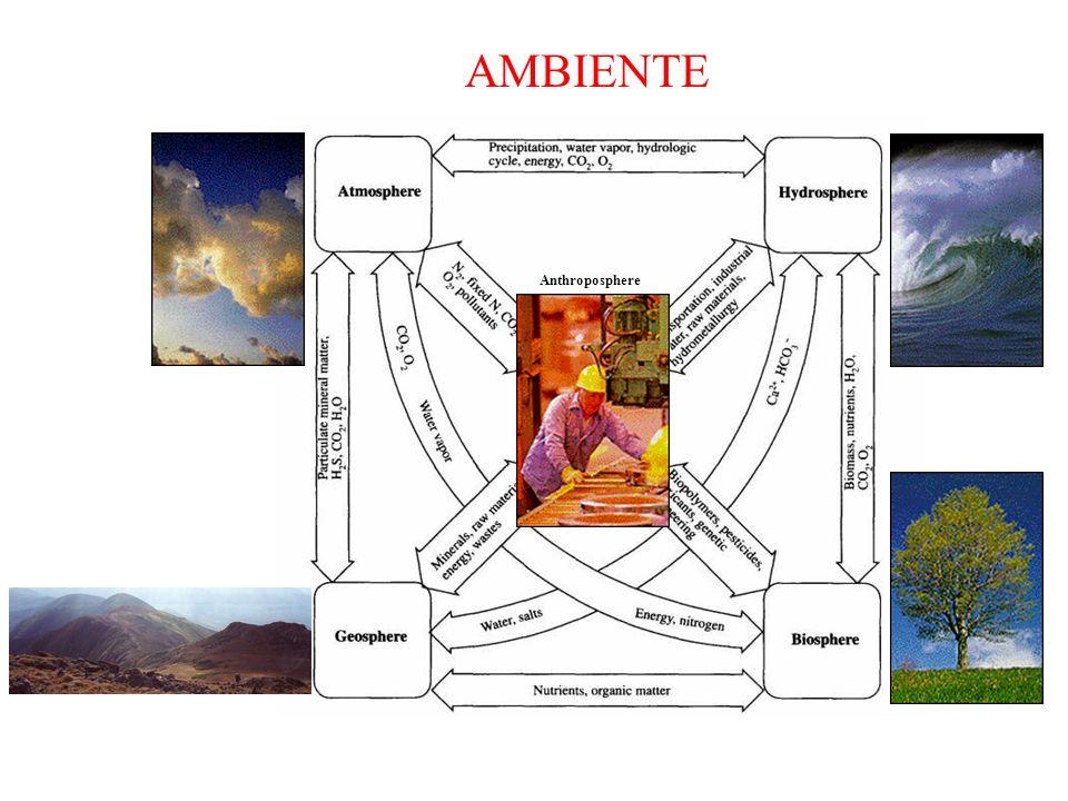 AMBIENTE Anthroposphere.