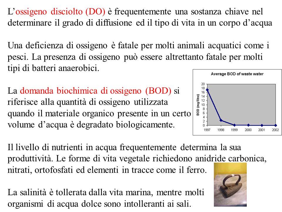 La domanda biochimica di ossigeno (BOD) si