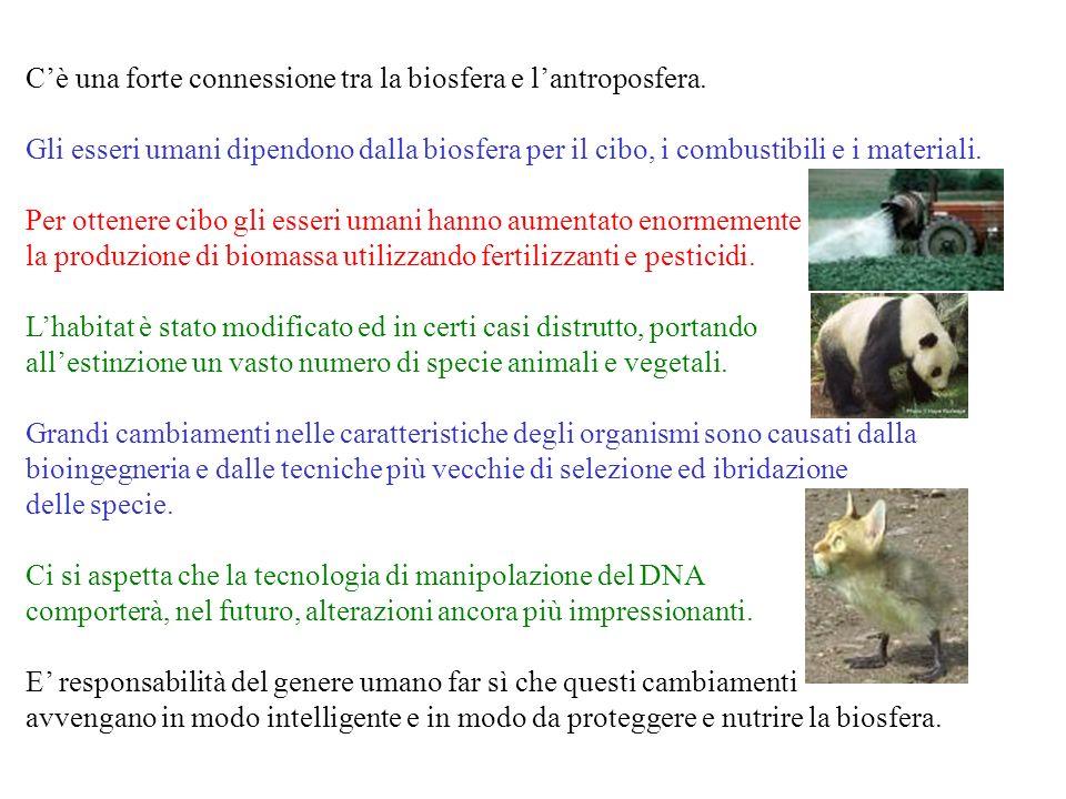 C'è una forte connessione tra la biosfera e l'antroposfera.
