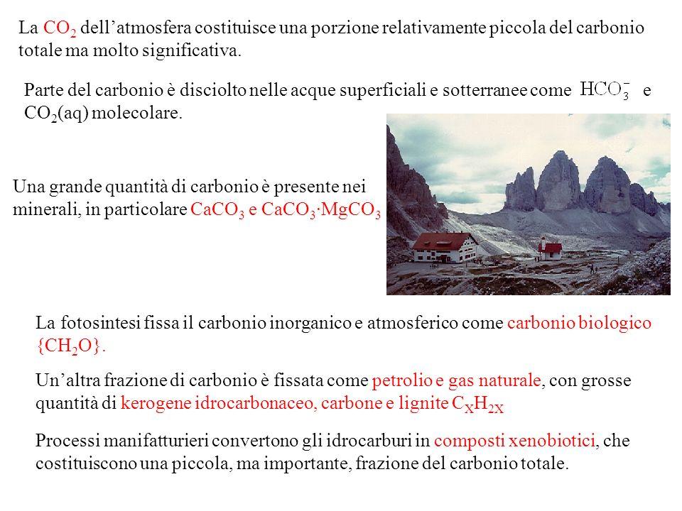 La CO2 dell'atmosfera costituisce una porzione relativamente piccola del carbonio totale ma molto significativa.