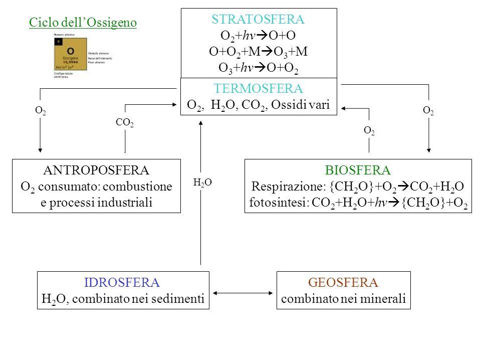 O2 consumato: combustione e processi industriali BIOSFERA