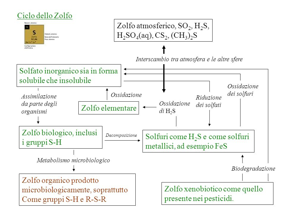 Zolfo atmosferico, SO2, H2S, H2SO4(aq), CS2, (CH3)2S