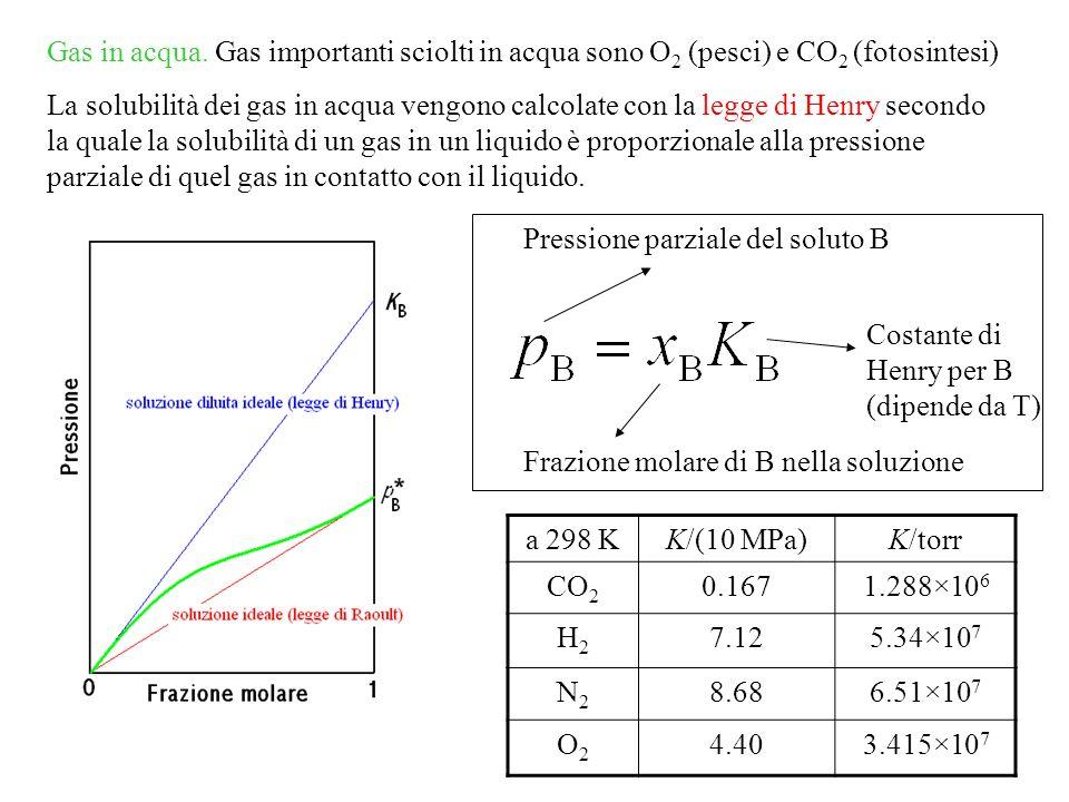 Gas in acqua. Gas importanti sciolti in acqua sono O2 (pesci) e CO2 (fotosintesi)