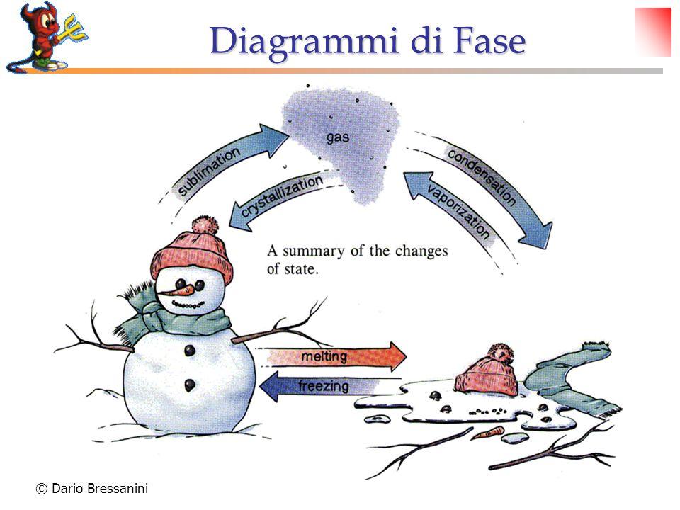 Diagrammi di Fase © Dario Bressanini