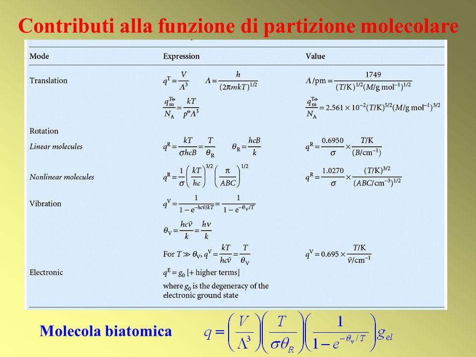 Contributi alla funzione di partizione molecolare