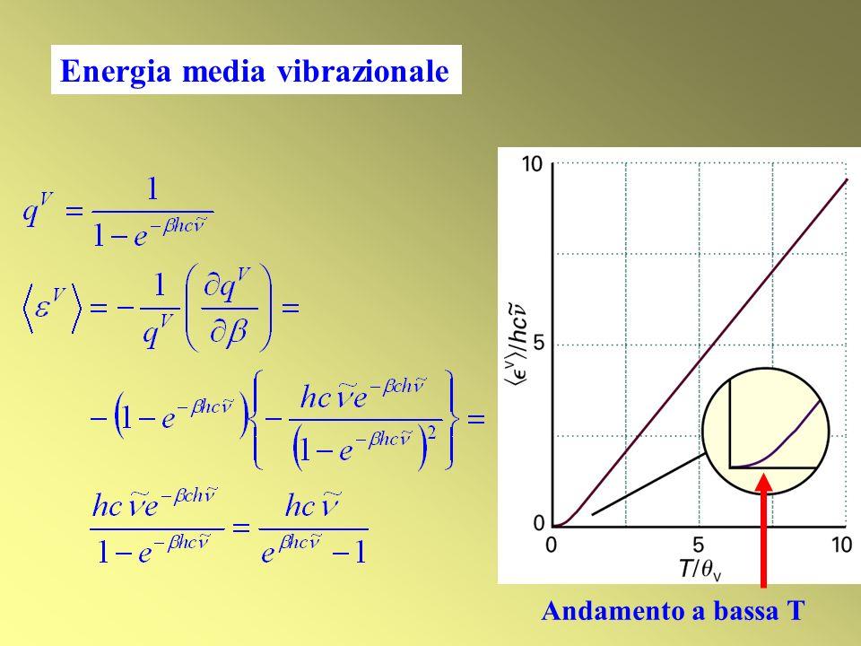 Energia media vibrazionale