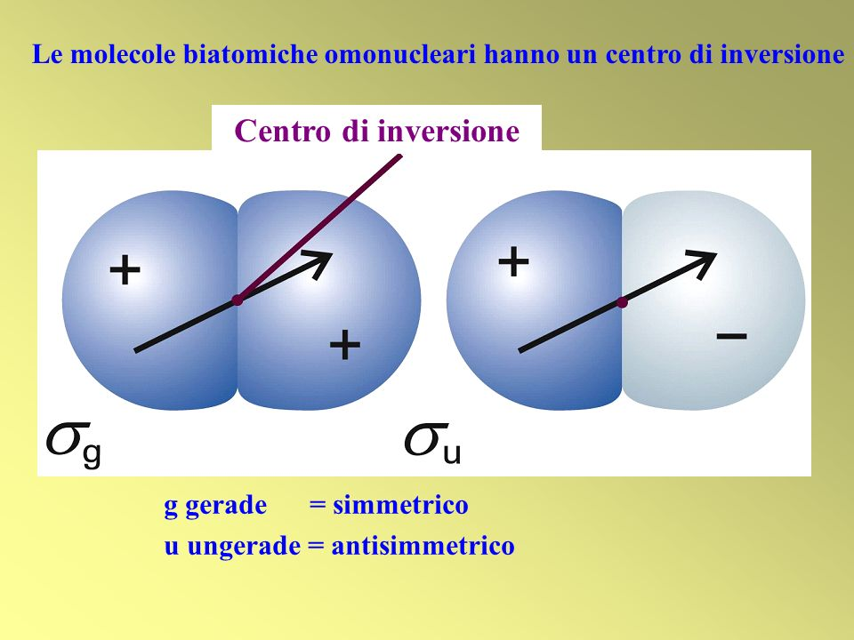 Le molecole biatomiche omonucleari hanno un centro di inversione