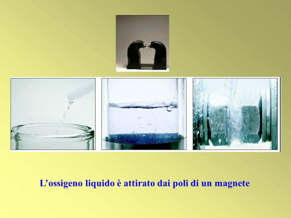L'ossigeno liquido è attirato dai poli di un magnete