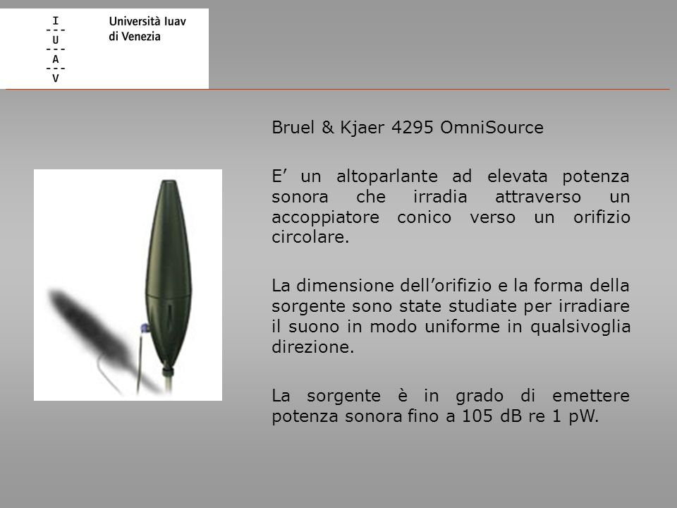 Bruel & Kjaer 4295 OmniSource