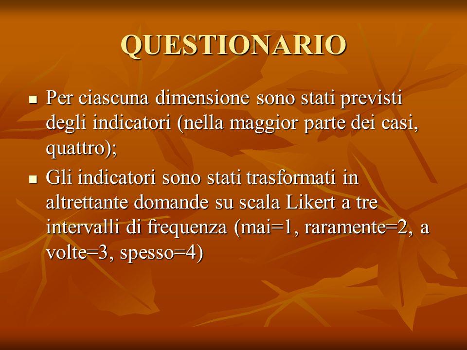 QUESTIONARIO Per ciascuna dimensione sono stati previsti degli indicatori (nella maggior parte dei casi, quattro);