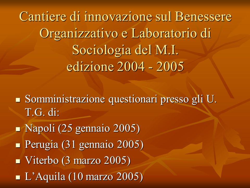 Cantiere di innovazione sul Benessere Organizzativo e Laboratorio di Sociologia del M.I. edizione 2004 - 2005