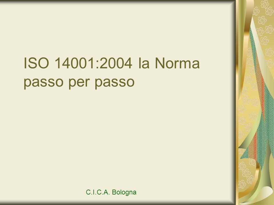 ISO 14001:2004 la Norma passo per passo