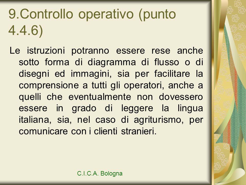 9.Controllo operativo (punto 4.4.6)
