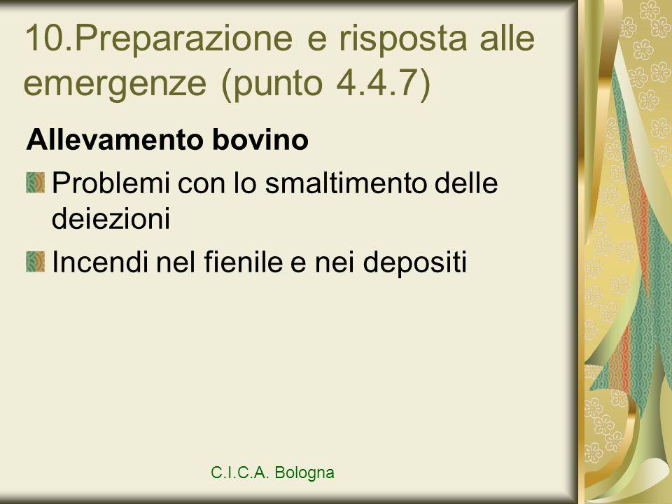 10.Preparazione e risposta alle emergenze (punto 4.4.7)