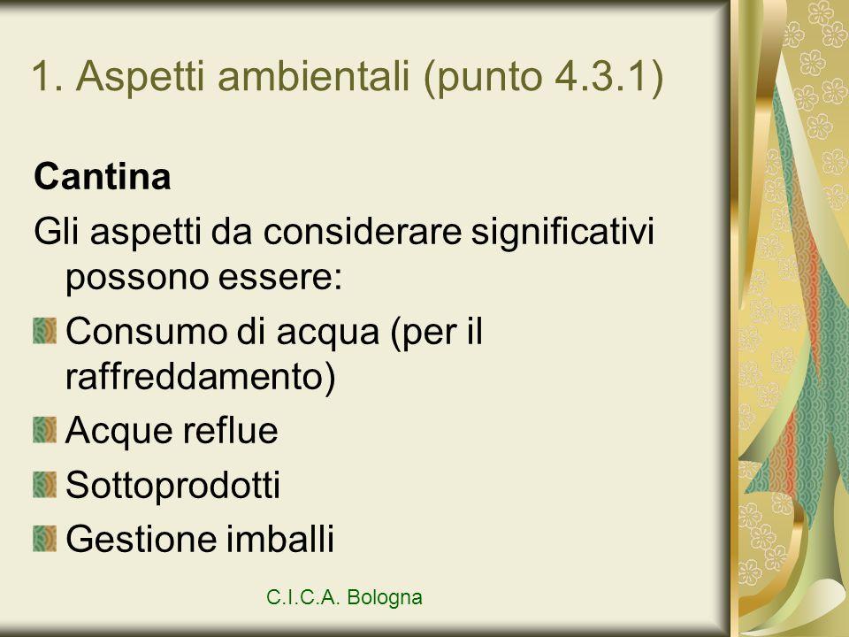 1. Aspetti ambientali (punto 4.3.1)