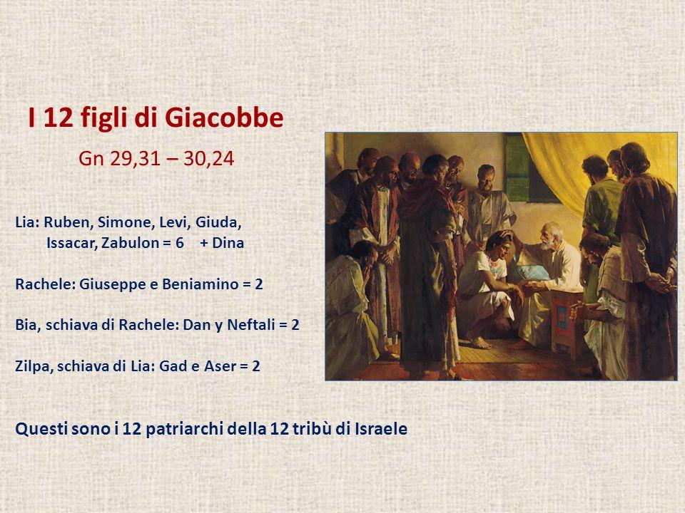 I 12 figli di Giacobbe Gn 29,31 – 30,24. Lia: Ruben, Simone, Levi, Giuda, Issacar, Zabulon = 6 + Dina.