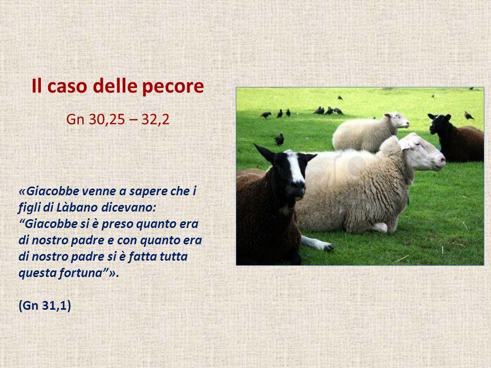 Il caso delle pecore Gn 30,25 – 32,2