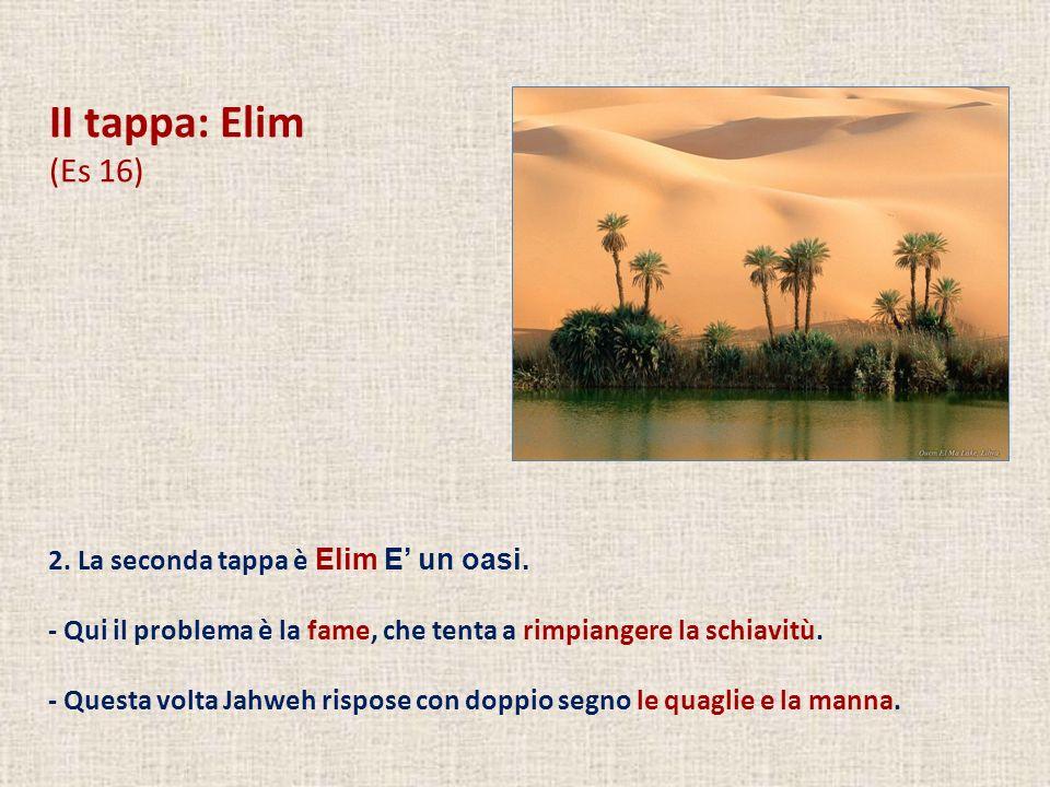 II tappa: Elim (Es 16) 2. La seconda tappa è Elim E' un oasi.