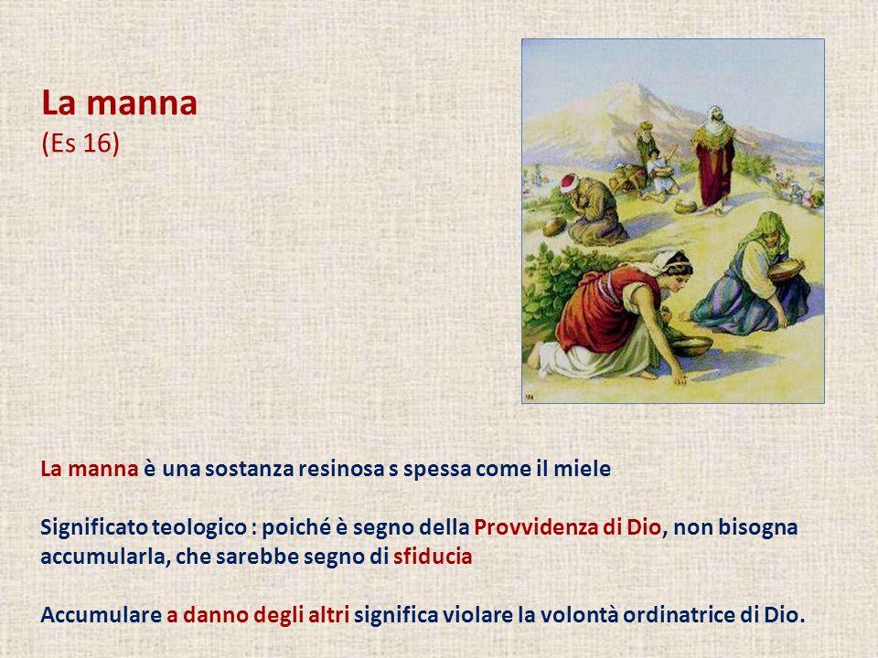La manna (Es 16) La manna è una sostanza resinosa s spessa come il miele.