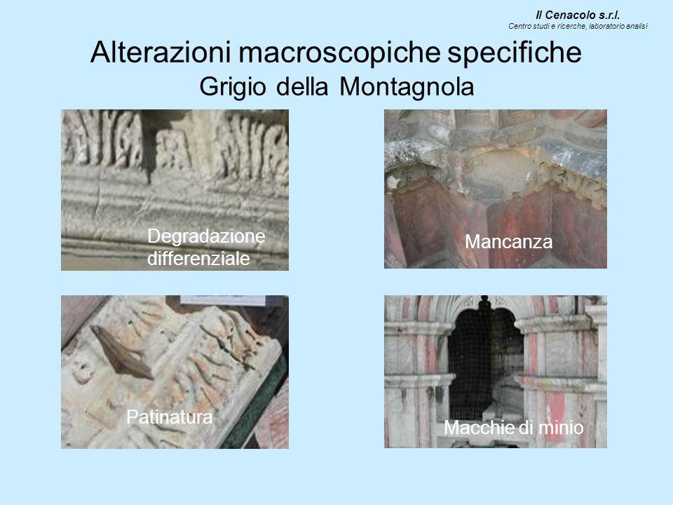 Alterazioni macroscopiche specifiche Grigio della Montagnola