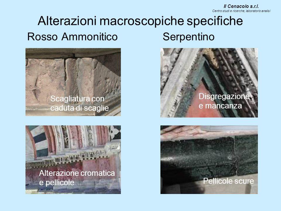 Alterazioni macroscopiche specifiche Rosso Ammonitico Serpentino