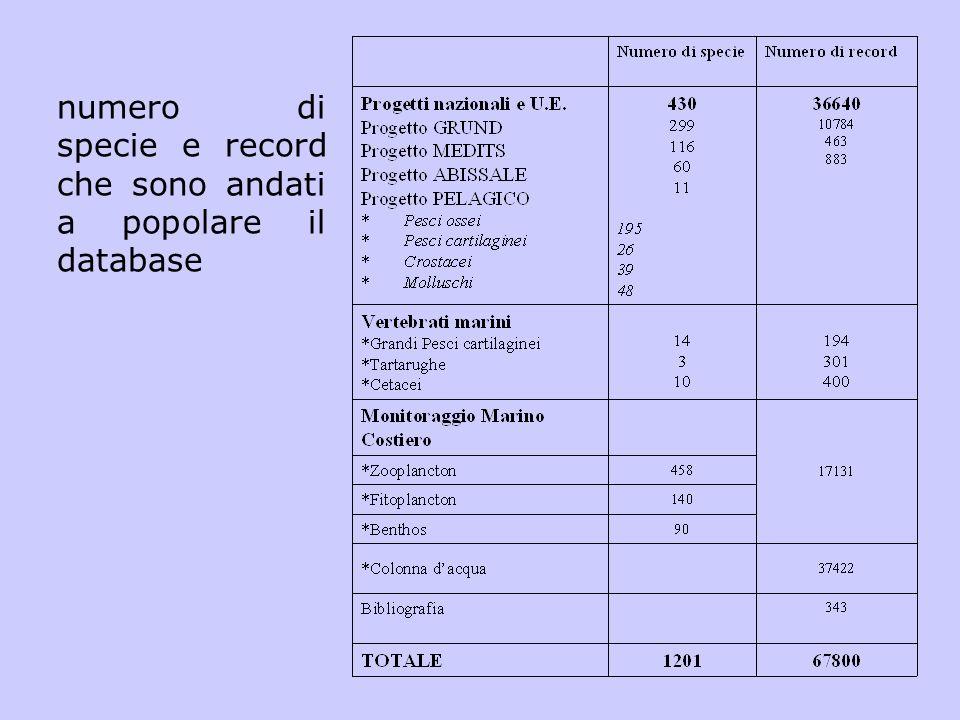 numero di specie e record che sono andati a popolare il database
