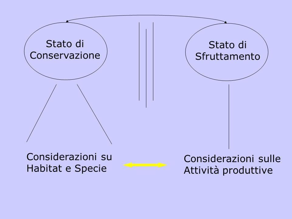 Stato di Conservazione. Stato di. Sfruttamento. Considerazioni su. Habitat e Specie. Considerazioni sulle.