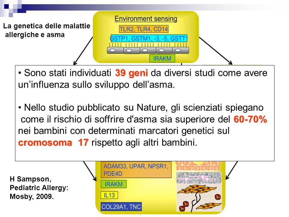 Sono stati individuati 39 geni da diversi studi come avere