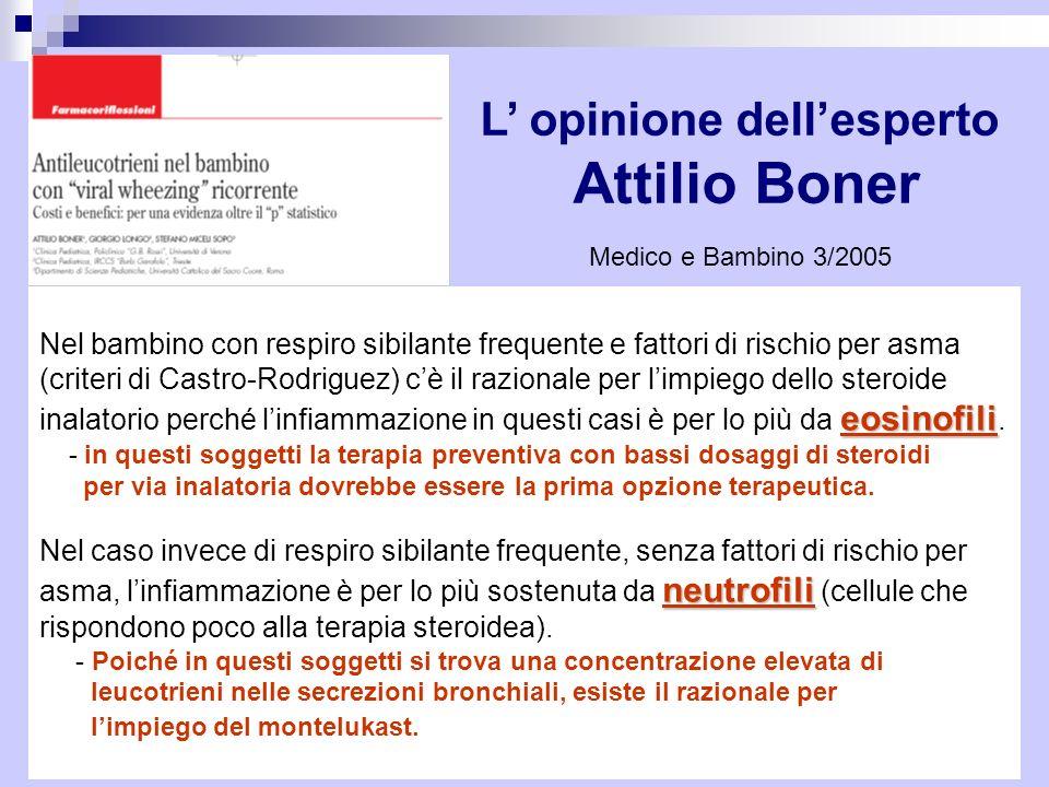 L' opinione dell'esperto Attilio Boner