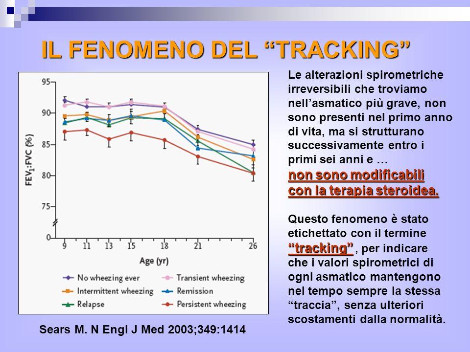 IL FENOMENO DEL TRACKING