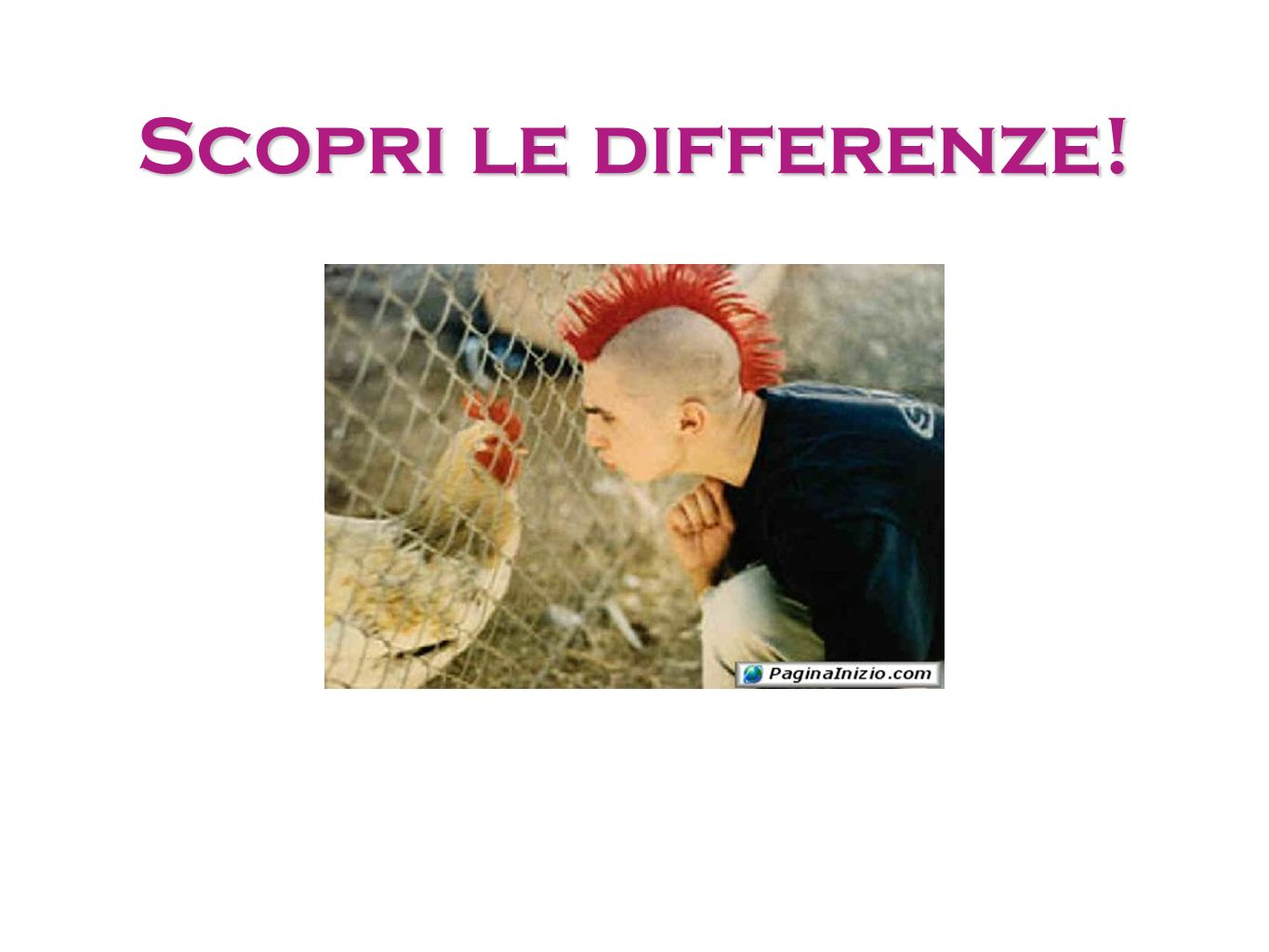 Scopri le differenze!