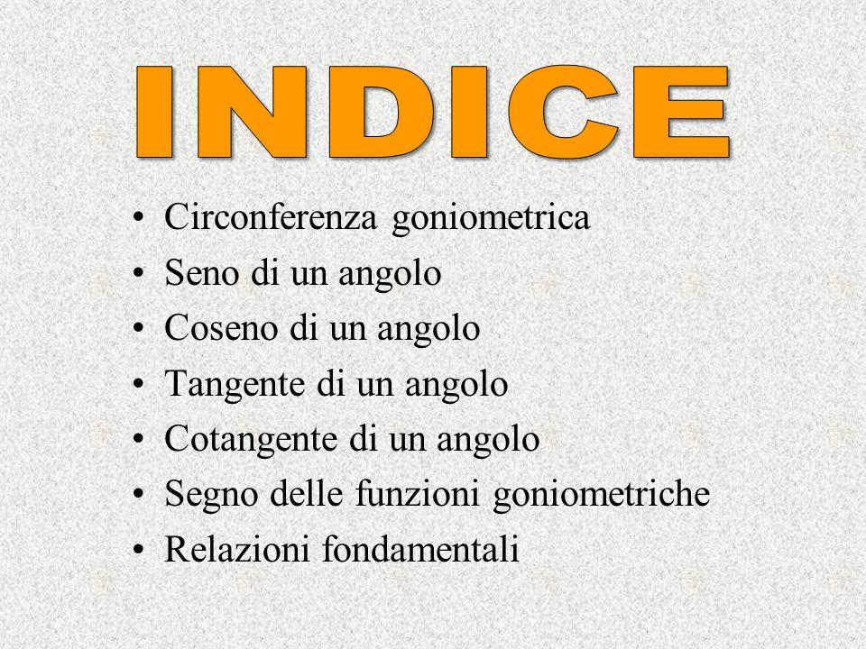 INDICE Circonferenza goniometrica Seno di un angolo