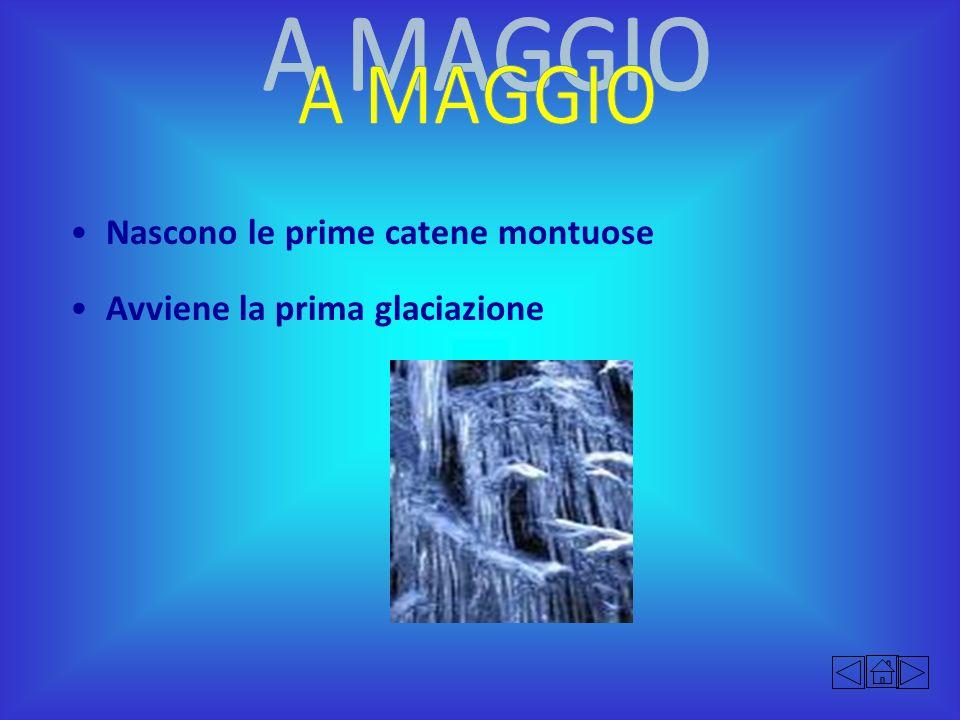 A MAGGIO Nascono le prime catene montuose Avviene la prima glaciazione
