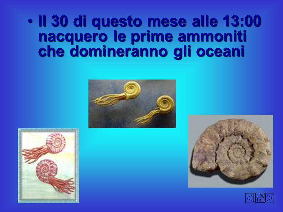 Il 30 di questo mese alle 13:00 nacquero le prime ammoniti che domineranno gli oceani