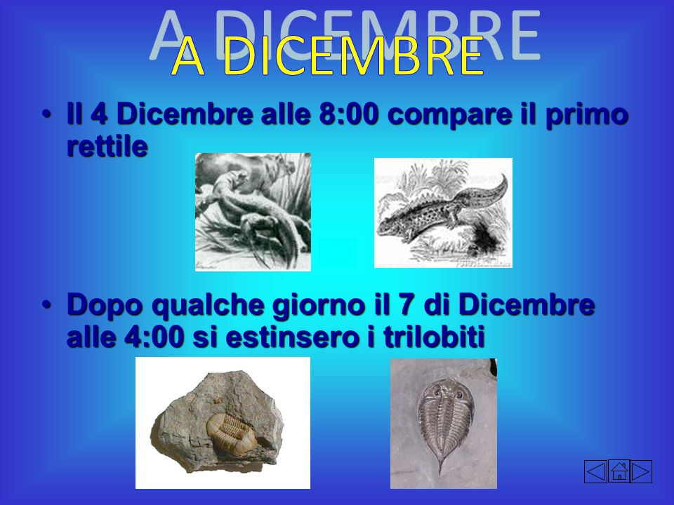 A DICEMBRE Il 4 Dicembre alle 8:00 compare il primo rettile