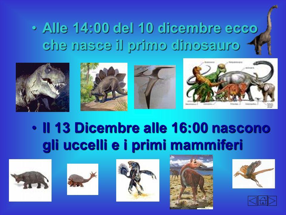 Alle 14:00 del 10 dicembre ecco che nasce il primo dinosauro