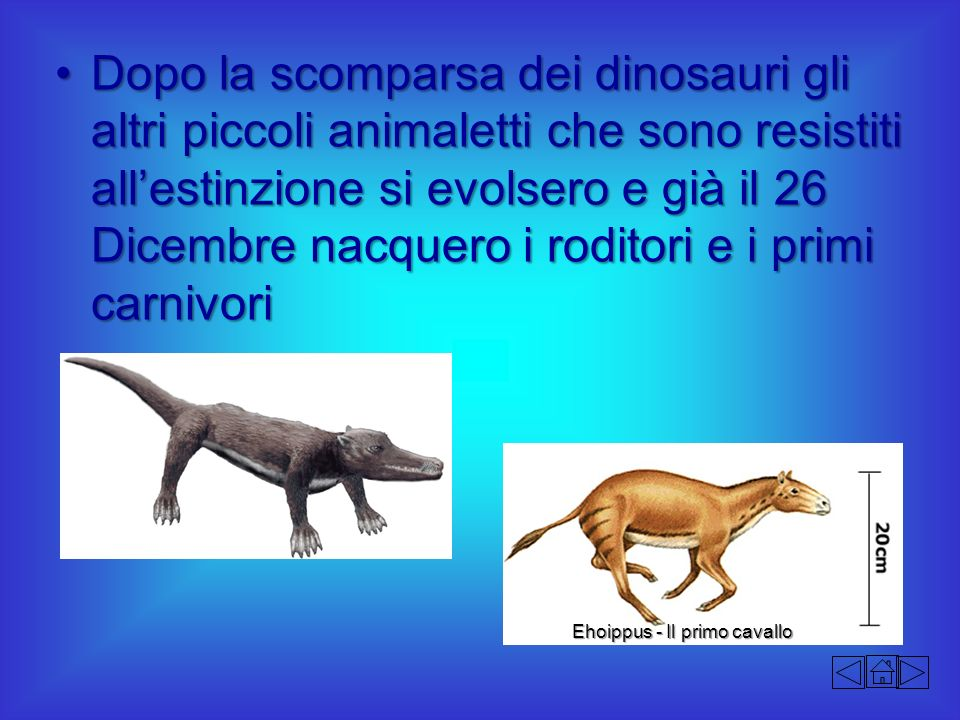 Dopo la scomparsa dei dinosauri gli altri piccoli animaletti che sono resistiti all'estinzione si evolsero e già il 26 Dicembre nacquero i roditori e i primi carnivori